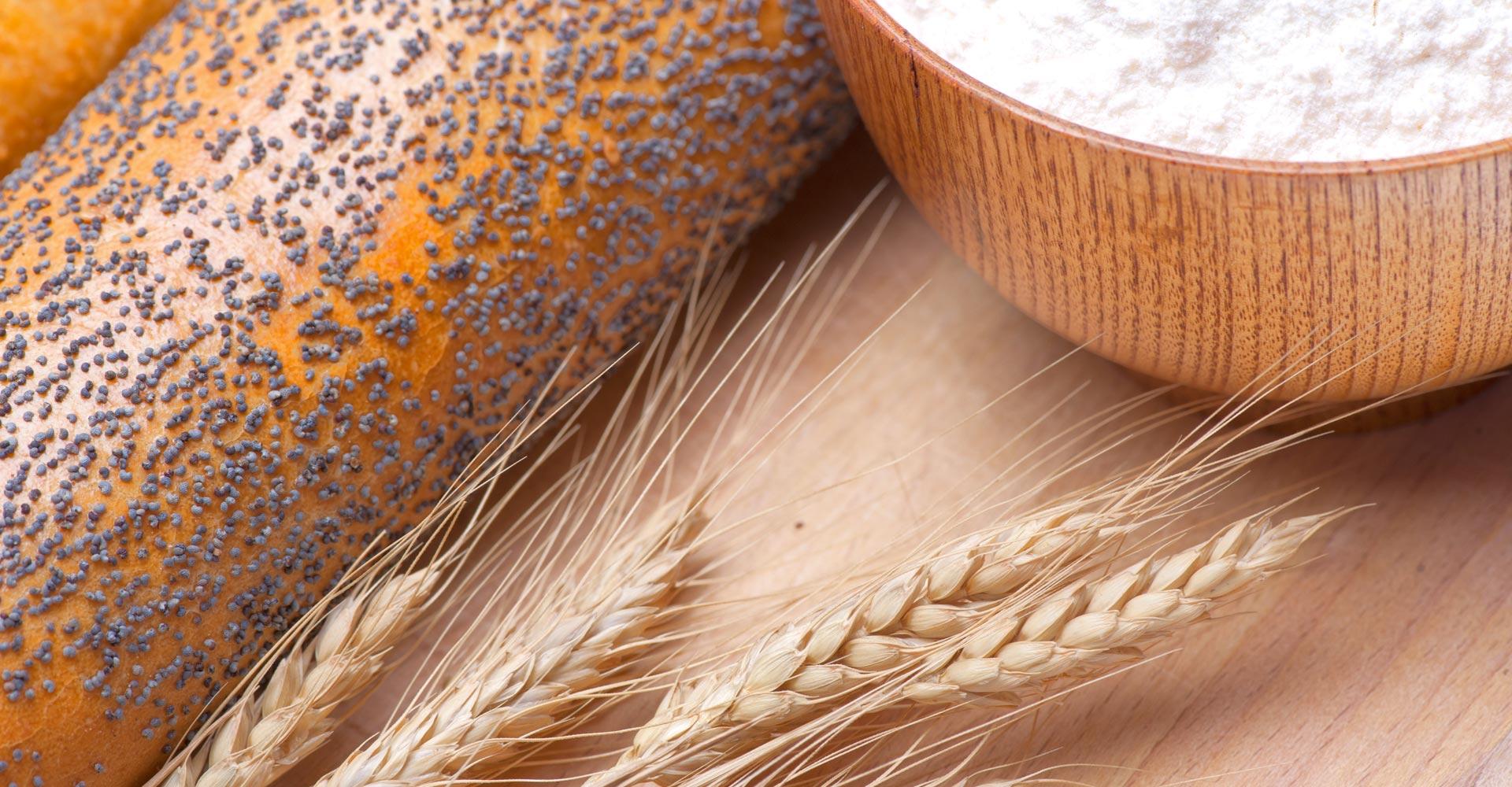 Forbak s.r.o. - all for bak - všetko pre pečenie, pekárenské, cukrárenské a gastro zariadenia, suroviny a prípravky na pečenie